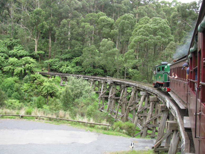 puffing billy through nature